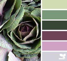 """""""La naturaleza es nuestra mejor fuente de inspiración para obtener una combinación de colores maravillosa. Aquí te dejamos la paleta del día para que la uses en cualquier proyecto. #ColoresDeLaNaturaleza """" Imagen por cortesía de: Design Seeds"""