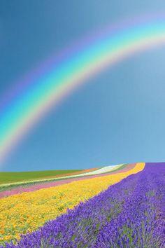 Rainbows everywhere . Rainbow Cloud, Over The Rainbow, Rainbow Photography, Nature Photography, Beautiful World, Beautiful Places, Rainbow Promise, Rainbow Images, Rainbow Aesthetic