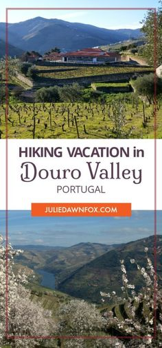 Douro wine region village to village walking holiday. Breathtaking views of vineyards and landscapes, opportunities to visit wineries and discover local culture, food and wine. #hiking #outdoor #selfguided #DouroValley #Portugal