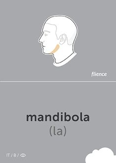 Mandibola: Jaw #Italian