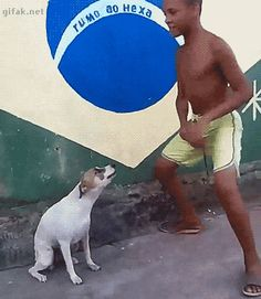 In Brazil even dogs can dance.