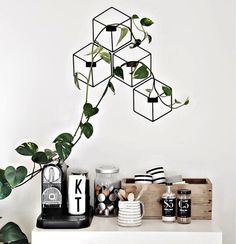 Marvelous Indoor Vines and Climbing Plants Decorations 16 - New Deko Sites Interior Styling, Interior Decorating, Nordic Interior, Decoration Plante, Blog Deco, Home And Deco, Interiores Design, Cheap Home Decor, Colorful Interiors