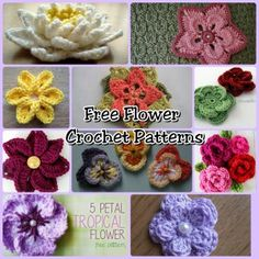 Free Flower Crochet Patterns  - 150+ Free Crochet Patterns for Mother's Day - The Lavender Chair