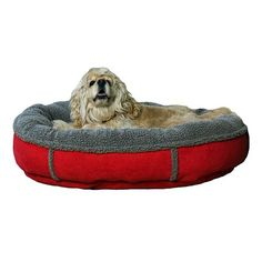 Carolina Pet Co. Faux Suede and Tipped Berber Oval Comfy Cup Pet Bed - 27'' x 24''