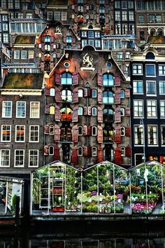 Amsterdam Flower Market - 18 stunningly beautiful pictures of Amsterdam… #Pictures