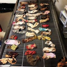 Veterinarian discovers dozens of socks inside of dog's stomach