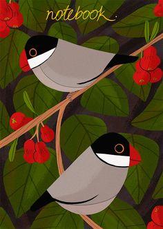 Illustration | Reimena Yee