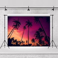 7x5ft Hawaii Dusk Backdrop Ocean Beach Island Seaside Landscape Tropical Palm Tree Landscape Sunset Summer Decoration for Theme Party Palm Trees Landscaping, Banquet Decorations, Ocean Beach, Dusk, Photo Booth, Seaside, Party Themes, Digital Prints, Backdrops