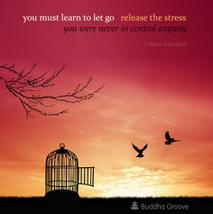 I have learned to let go of situations and people that stress me out, it is like a weight lifted off of you