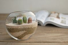 I love the different colored sand patterns. Cacti are so cute!