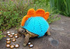 Mossy Tortoise - Tortoise sweaters - so cute!