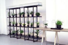 Pikaplant: Effortless Plant Watering