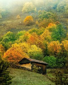 """""""Photo by @yeldabaler check out her feed for more!  Kastamonu, Turkey"""""""