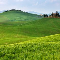 Tuscan hills are calling....
