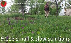 Permaculture Principles Use Small and Slow Solutions This small & slow solution of scything the orchard makes no noise, doesn't break down or cost us fuel, produces the best hay for animals and keeps us fit! Permaculture Principles, Permaculture Design, Natural Playground, Forest Garden, Vegetable Gardening, Ecology, Nature, Animals, Inspiration
