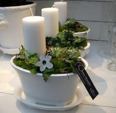 Ljus i kruka Christmas Flowers, Christmas Crafts, Christmas Decorations, Candle Arrangements, Home Candles, Candels, White Cottage, Centre Pieces, Spring Crafts