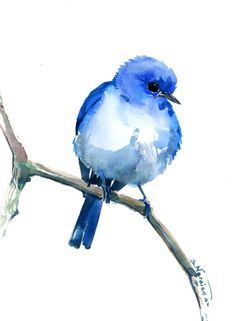Mountain Bluebird, Original watercolor painting, 12 X 9 in by ORIGINALONLY on Etsy