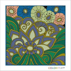 Donna Shaw Colorfy