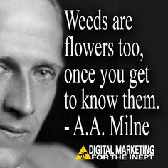 Weeds are flowers too, once you get to know them -- A.A. Milne #WisdomWednesday
