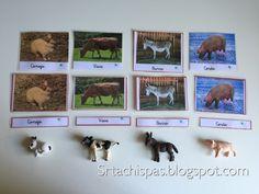Srta Chispas: Montessori para descargar. Tarjetas 3 pasos (Animales de Granja)