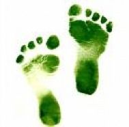 Go green baby! Mean Green, Go Green, Green Colors, Green Tips, Green Ideas, Green Fruit, Fresh Green, World Of Color, Color Of Life