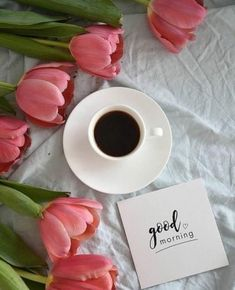 Are you searching for inspiration for good morning quotes?Browse around this website for cool good morning quotes ideas. These enjoyable quotes will you laugh. Coffee Break, Good Morning Coffee, Good Morning Good Night, Good Morning Images, Happy Coffee, Good Morning Greetings, Good Morning Wishes, Coffee Flower, Pause Café