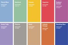 pantone color's of the year
