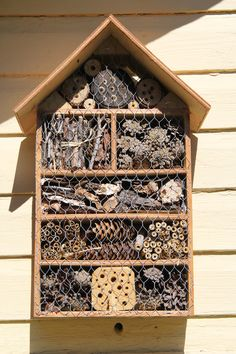 Hyönteishotelli Bug Hotel, Flowers To Go, Amazing Flowers, Garden Projects, Projects To Try, Diy Jardin, Math Wall, Christmas Wood Crafts, British Garden