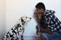 O cão é o espelho de seu dono e vice-versa. Com essa obra quero passar a ideia de que o cão, quando é criado desde pequeno com a mesma pessoa, acaba adquirindo alguns aspectos da personalidade de seu dono. Assim com o tempo eles acabam se tornando um só, completando um ao outro com companheirismo, amor, fidelidade, dentre outras nobres qualidades. Nome: Matheus de Mello Turma:1004