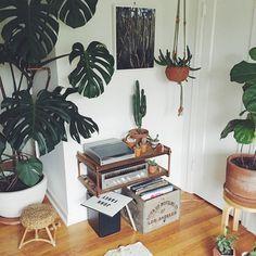 Plants, vinyl, macrame...