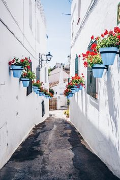 6 Jaw-Dropping White Villages in Málaga (Spain)