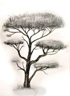 Learn how to draw seven different trees. Step by step instructions with easy to follow photos.