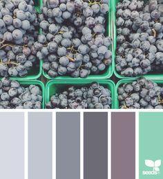 Fresh Hues - https://www.design-seeds.com/market-hues/fresh-hues-9