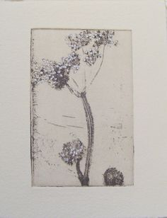 original etching of a flowerhand pulled by Fleurografie on Etsy, €12.00