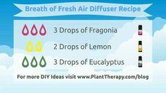 Breath of fresh air diffuser blend: fragonia,  lemon,  eucalyptus essential oils