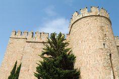 © 2007 Pedro M. Mielgo. Castillo de Orgaz (Toledo).