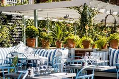 A long time favourite the blueprint caf would be destination for grace dent reviews the ivy chelsea garden restaurants going out london evening standard malvernweather Image collections