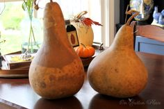 Staining and sealing gourds is an easy and inexpensive way to preserve them. They will last for many years if stored in a dry, dark place. Check out my blog pos…
