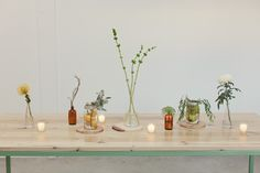 "Minimalistic industrial-rustic table ""runner"", floral design: Jennifer Young,  photography: Ben Blood"