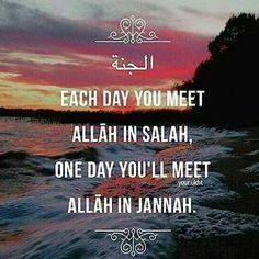 Subhanallah!! INSHA ALLAH one Day