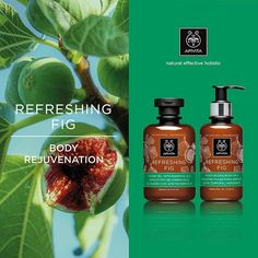 New Discover shower gel and body lotion with for a full body rejuvenation promoting APIVITA Shower Gel, Body Lotion, Full Body, Fig, Body Care, Moisturizer, Remedies, Packaging, Lovers