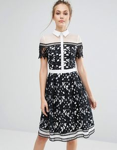 Chi Chi London | Chi Chi London Premium black & white Lace Panelled Dress With Contrast Collar at Asos