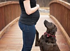 Frederick Maryland Maternity Photographer, Martinsburg WV Maternity Photographer, Charles Town WV Maternity Photographer, Hagerstown WV Maternity Photographer, Winchester VA Maternity Photographer, Northern VA Maternity Photographer, Maternity Photography, Maternity Poses, Outdoor Maternity, Maternity Poses with Dogs