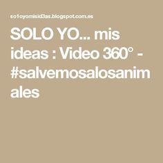 SOLO YO... mis ideas : Video 360° - #salvemosalosanimales