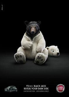 #500 #photomanipulation #bear