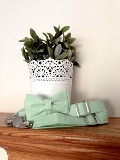 Hey, I found this really awesome Etsy listing at https://www.etsy.com/listing/163003183/mint-bow-tie-mint-suspenders-set-kona