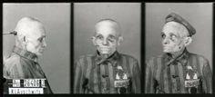 Wilhelm Brasse' Mugshots – Photographer Took Up to 50,000 Chilling Photos in Auschwitz for the Nazis during World War II