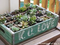 Love of old crates + love of succulents=best.planter.ever.
