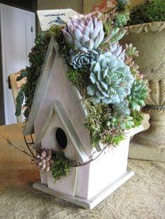 vogelhaus holz umweltfreundlich diy selber bauen | vogelhäuser, Garten und erstellen