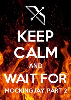 Yeah, keep calm. Not a chance. Hunger Games Fandom, Hunger Games Mockingjay, Mockingjay Part 2, Hunger Games Catching Fire, Divergent Series, Hunger Games Trilogy, Keep Calm Posters, Keep Calm Quotes, Jenifer Lawrence